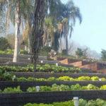 Conheça a Chácara 100% Orgânica do Blumen Haus em Nova Petrópolis / Serra Gaúcha