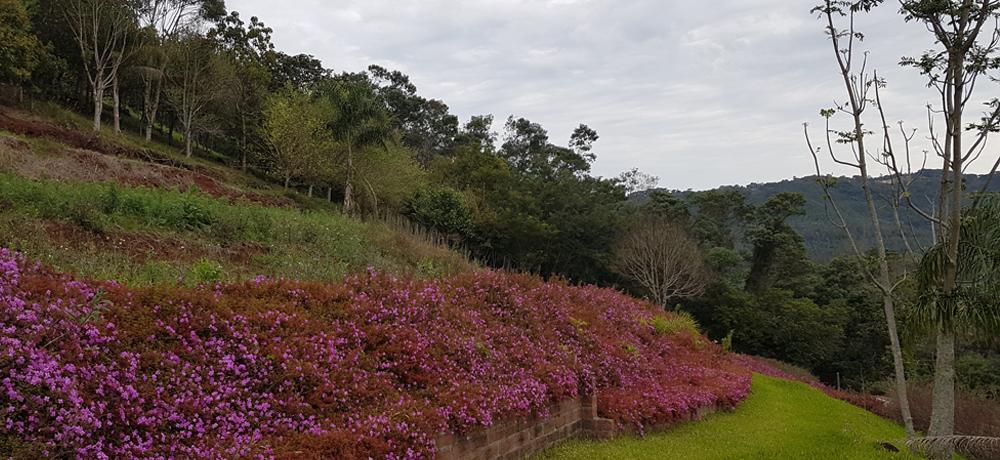 Blumen Haus - Empreendimento com Paisagem Projetada nos Detalhes na Serra Gaúcha / Nova Petrópolis