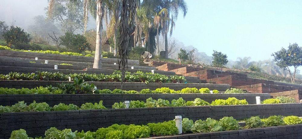 Produção Orgânica do Condomínio Blumen Haus / Nova Petrópolis / Serra Gaúcha