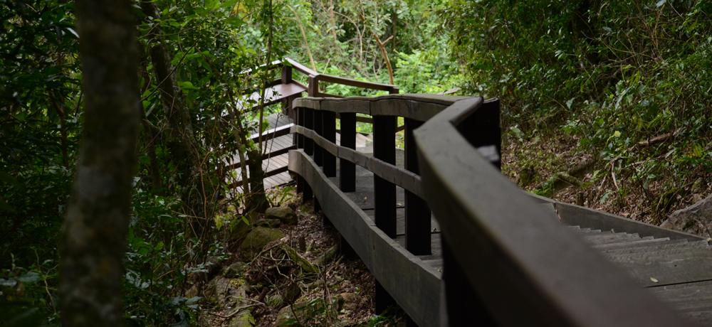 Realizar Visita no Condomínio Blumen Haus em Nova Petrópolis / Serra Gaúcha